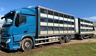 牲畜运输车 MERCEDES-BENZ Actros 2548 for pigs transport + 牲畜运输拖车