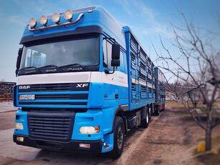 牲畜运输车 PEZZAIOLI + 牲畜运输拖车