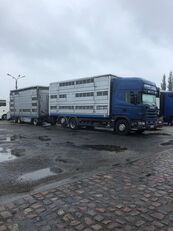 牲畜运输车 SCANIA 124-420 + 牲畜运输拖车