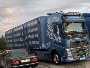 牲畜运输车 VOLVO TOP FH13 540-EURO 6 -4 level Jumbo PLAVAC